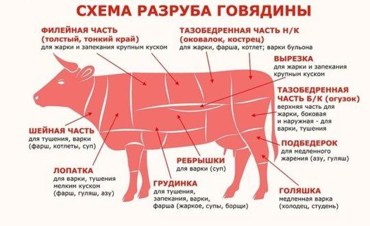 kak-vibrat-govjadinu