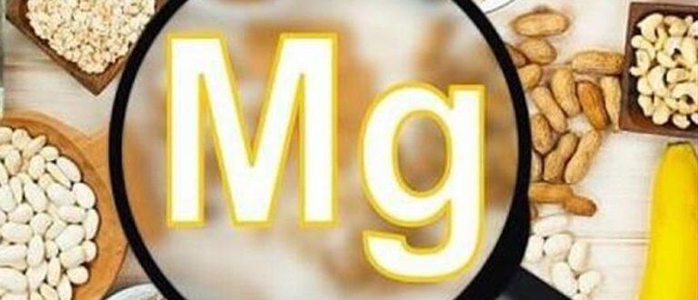 dlja-chego-MG-nyzen-organizmy-cheloveka