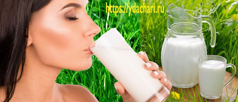 chem-polezen-kefir-dlya-organizma-cheloveka