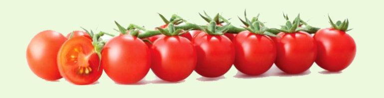 chem-polezny-pomidory
